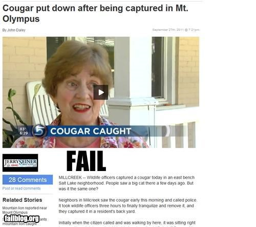 cougar,failboat,g rated,headline,juxtaposition,Probably bad News