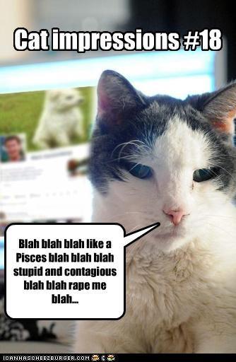 Cat impressions #18