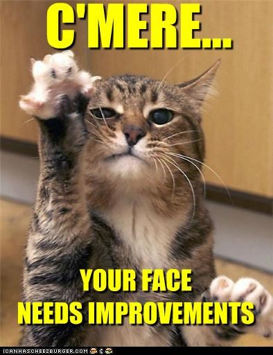 best of the week,caption,captioned,cat,claws,cmere,come,come here,face,Hall of Fame,here,improvements,just saying,needs,reaching