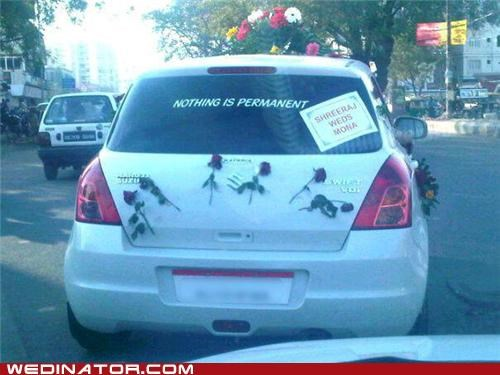 cars,FAIL,funny wedding photos,Just Married