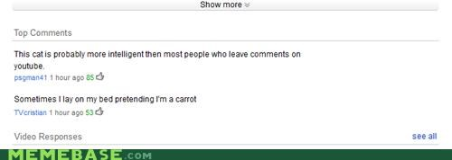 carrot,cat,comments,intelligent,wtf,youtube