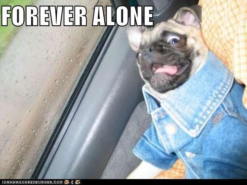 denim denim jacket dogs forever alone i has a hotdog jean jackets Memes pugs Sad - 5251633920