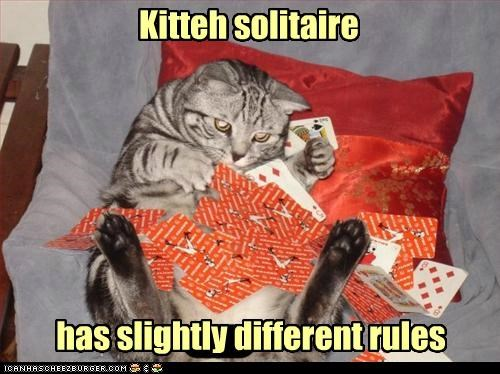 caption captioned cards cat different rules slightly solitaire