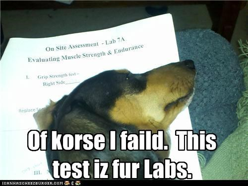 Of korse I faild. This test iz fur Labs.