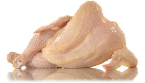 Chicken Pinup,slow news day,Tony Cenicola