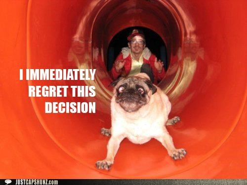 animals,derp,do not want,dogs,expressions,i has a hotdog,pugs,regret,slides,unhappy