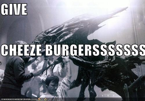 Cheezburger Image 5252303616