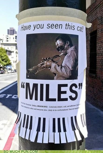 awesome cat double meaning Hall of Fame jive miles miles davis poster question slang win - 5252580352