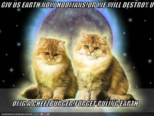 Cheezburger Image 5252606976