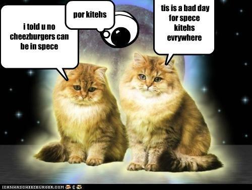 Cheezburger Image 5252702720