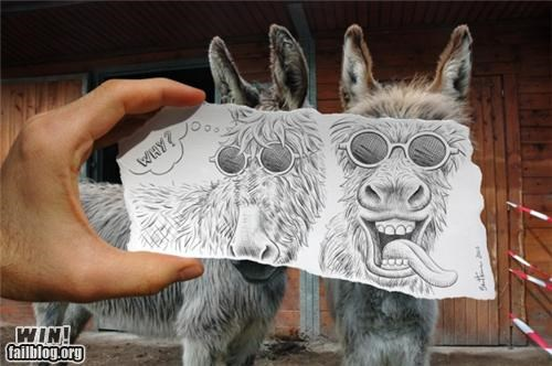 animals classic donkey drawing hacked sketch - 5253312512