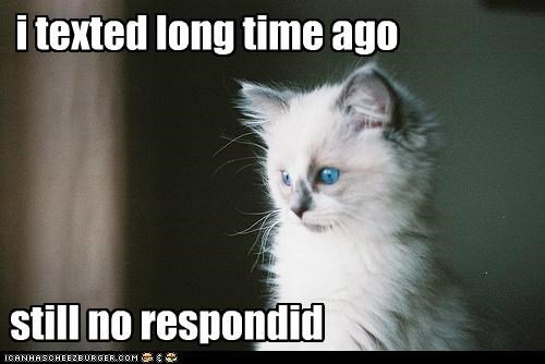 i texted long time ago still no respondid