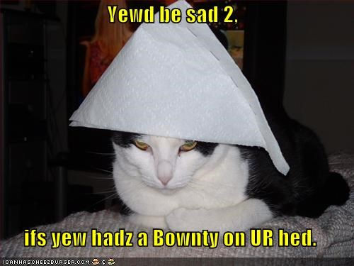 angry bounty hats lolcats paper towels Sad - 525374208