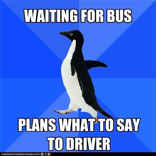 arrive,bus,conversation,plan,socially awkward penguin