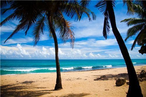 beach,blue,caribbean,caribbean island,caribbean ocean,clouds,getaways,ocean,palm trees,puerto rico,sand,tan,united states