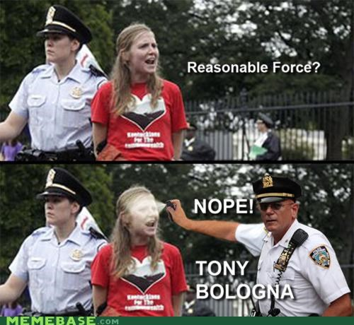 nope,reasonable force,tony bologna