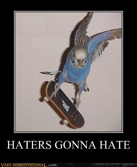 animals awesome bird Pure Awesome skateboard