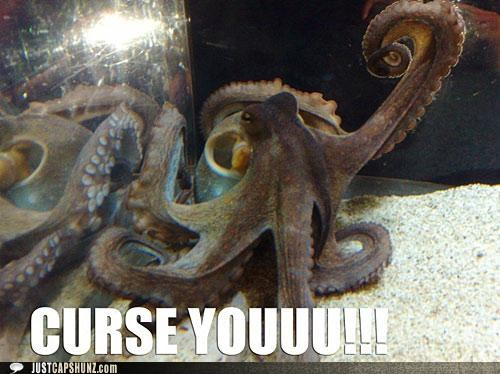 animals,curse you,fist,I Can Has Cheezburger,octopus,sea creatures
