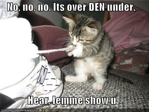 caption,captioned,cat,demonstrating,demonstration,instructions,kitten,no,over,shoes,tying,under