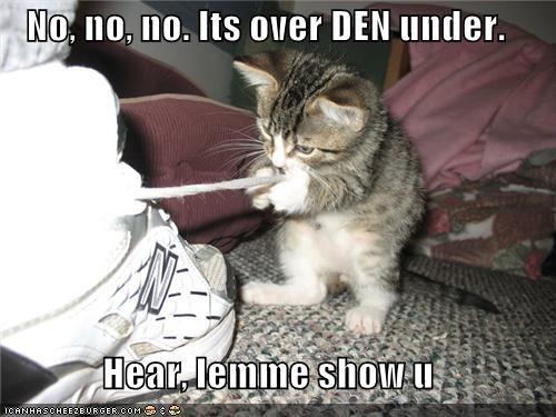 caption captioned cat demonstrating demonstration instructions kitten no over shoes under - 5255302144