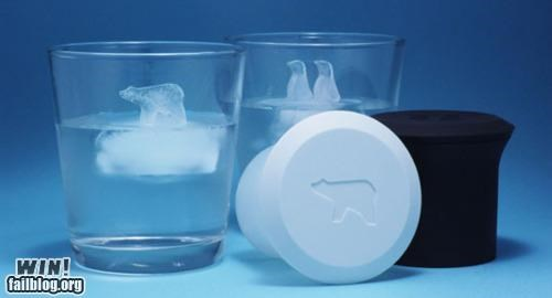 arctic,design,drink,glass,ice,ice cube,mold,penguin,polar bear