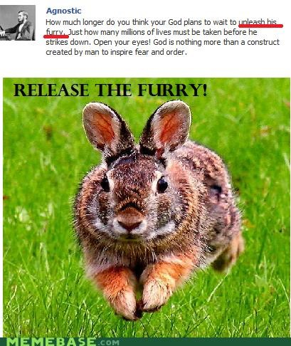 animemes Fluffy furry fury Memes rabbit unleash - 5255752704