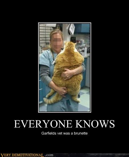 cat fat garfield hilarious huge wtf - 5256758272
