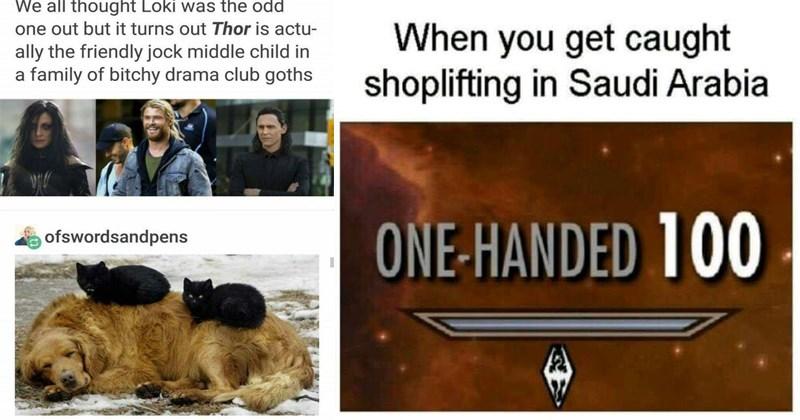 dogs tumblr Memes doggo social media animals dating - 5256965