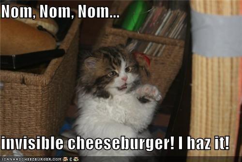 Cheezburger Image 5256966656