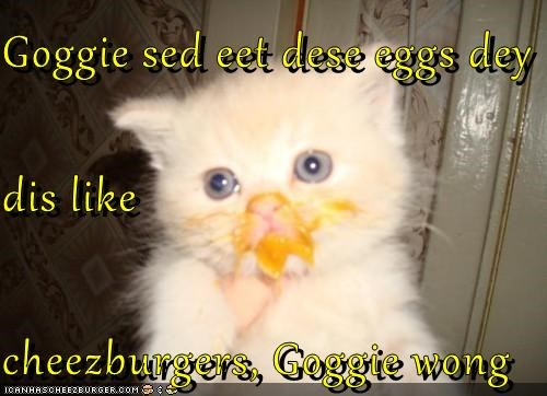 Cheezburger Image 5257229824