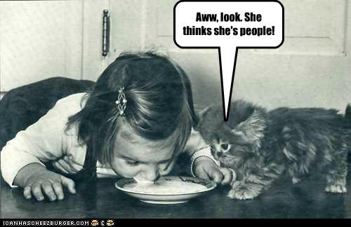 animal,cat,funny,historic lols,kid,kitty,Photo