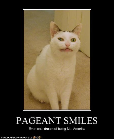 animals beauty pageants Cats I Can Has Cheezburger miss america smiles smiling - 5257462784