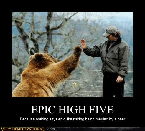 animals,bear,epic,high five,Pure Awesome
