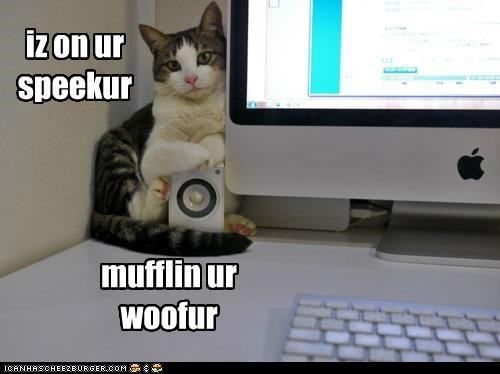 iz on ur speekur mufflin ur woofur