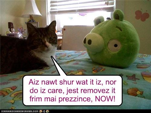 Aiz nawt shur wat it iz, nor do iz care, jest removez it frim mai prezzince, NOW!