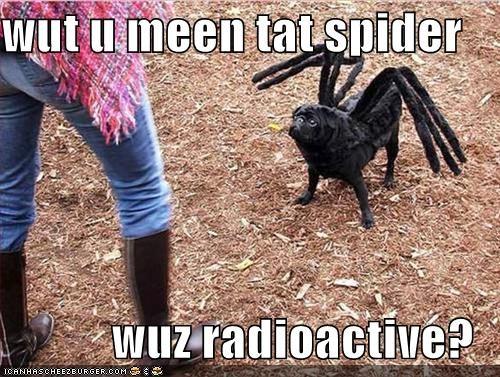 8 legs costume halloween halloween costume huh pug radioactive spider - 5258511360