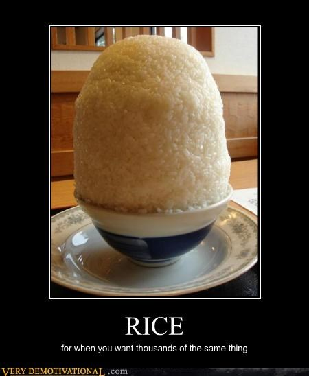 boring food hilarious rice - 5258596096