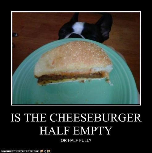 Cheezburger Image 5258795008