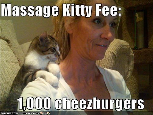 Cheezburger Image 5258813952