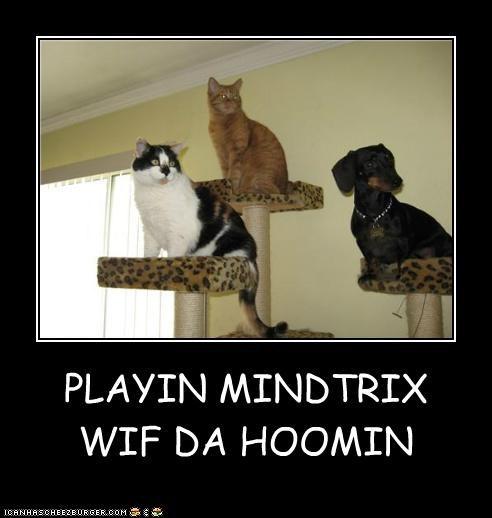 PLAYIN MINDTRIX WIF DA HOOMIN
