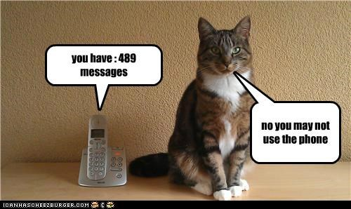 no you may not use the phone you have : 489 messages