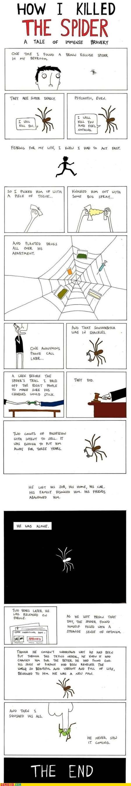 best of week bravery killing never saw it coming spider the internets tricked u mad - 5260448256