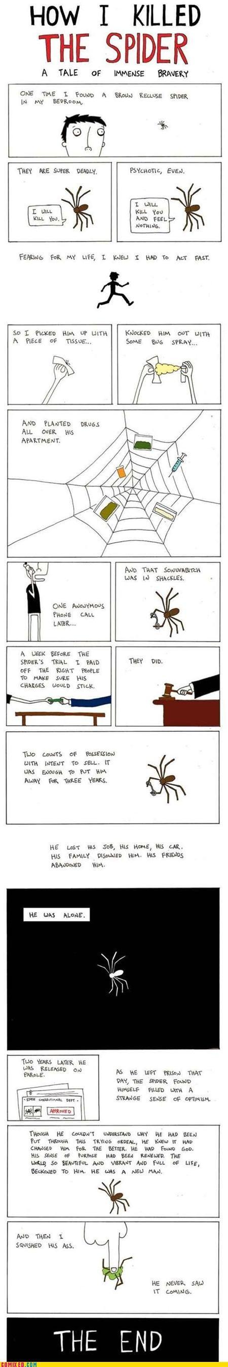 best of week killing spider the internets u mad - 5260448256