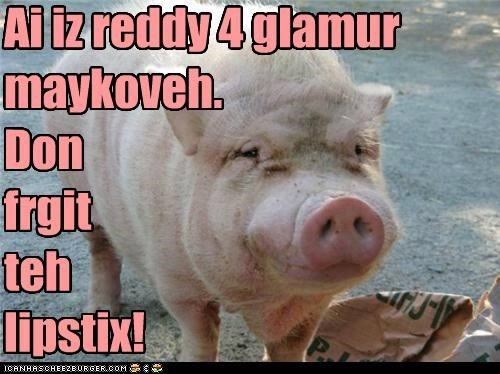 animals beauty beauty products glamour makeover gorgeous makeover pig - 5263192576