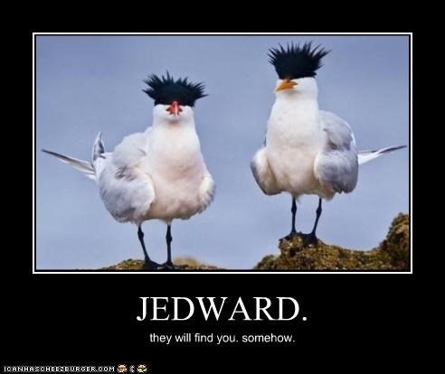 JEDWARD.