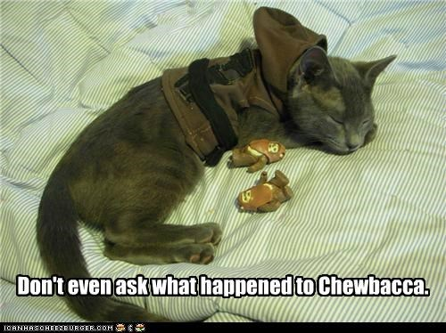 ask cat chewbacca costume dont dont-ask dressed up ewoks happened sleeping star wars what - 5264361984