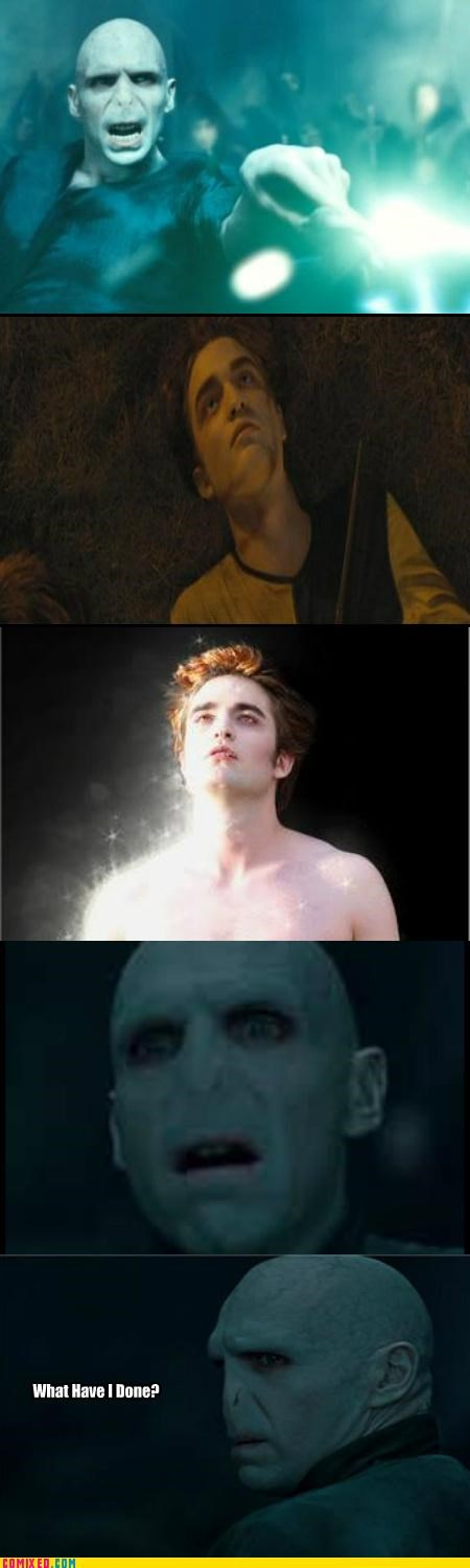 best of week,glitter,Harry Potter,sparkling,twilight,vampire,voldemort,what have I done