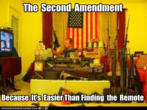 The Second Amendment Because It's Easier Than Finding the Remote