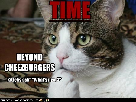 Cheezburger Image 5265530112