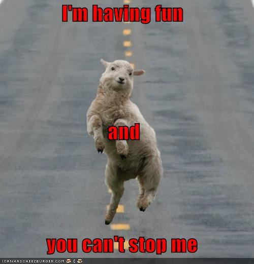 animals awesome dance dancing dont-stop-me-now fun happy having fun sheep stoked